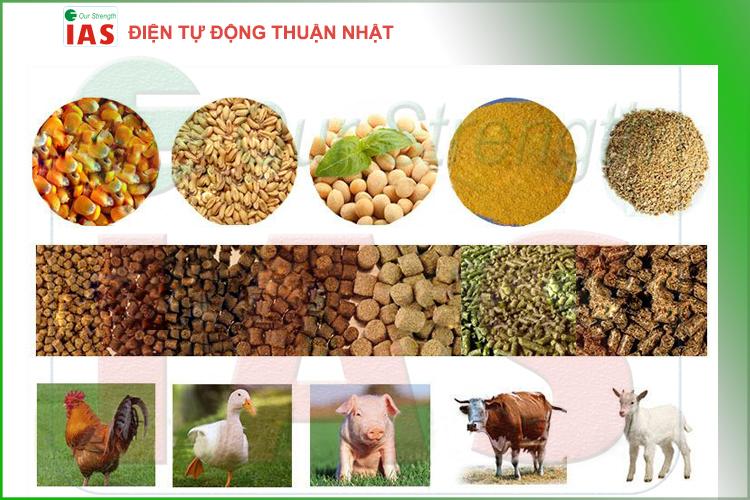 Dây chuyền sản xuất thức ăn chăn nuôi – Thuận Nhật