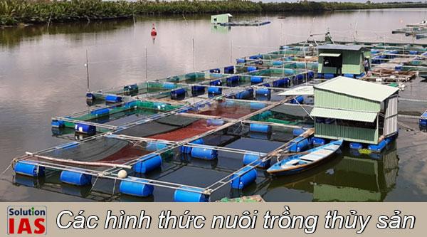 Các hình thức nuôi trồng thủy sản